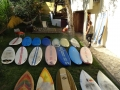 Garden with some of board quiver.